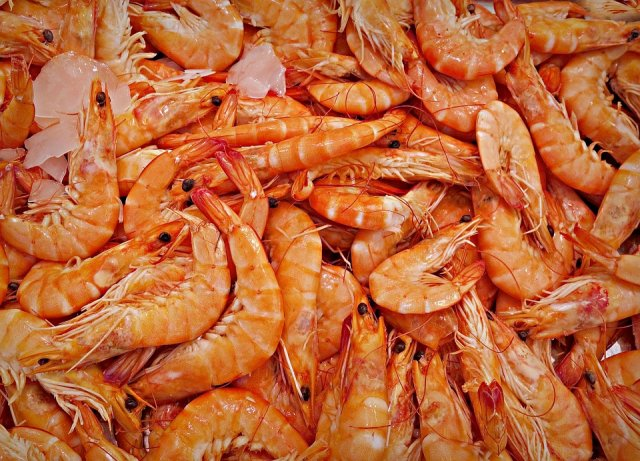 Fishing for profits - shrimp farmers in Colombia have caught on to IoT