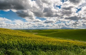 Microsoft and GE team up on wind energy and battery tech