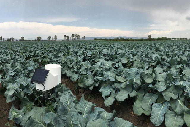 Inmarsat inks deal with Pessl Instruments on agricultural IoT