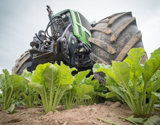 Real-time disease monitoring unearths power of IoT in agriculture