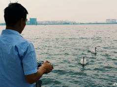 singapore swan robots measure water quality on resevoirs