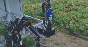 With the help of partners across Europe, researchers at Berlin'sFraunhofer Institute are developing a robotic system capable of automating the cucumber harvest.