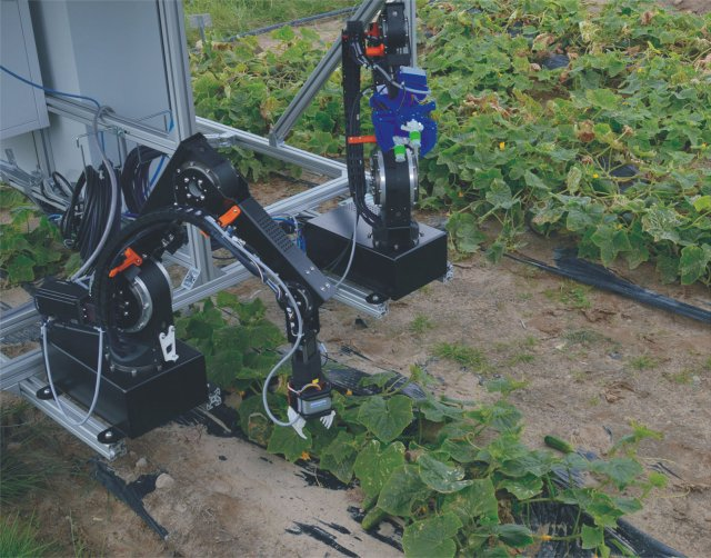 With the help of partners across Europe, researchers at Berlin's Fraunhofer Institute are developing a robotic system capable of automating the cucumber harvest.
