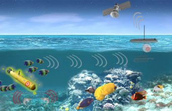 DARPA - PALS program could develop an underwater network of marine spies