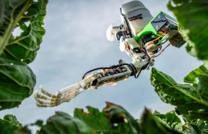 The GummiArm robot - filling the labour market void in UK agriculture