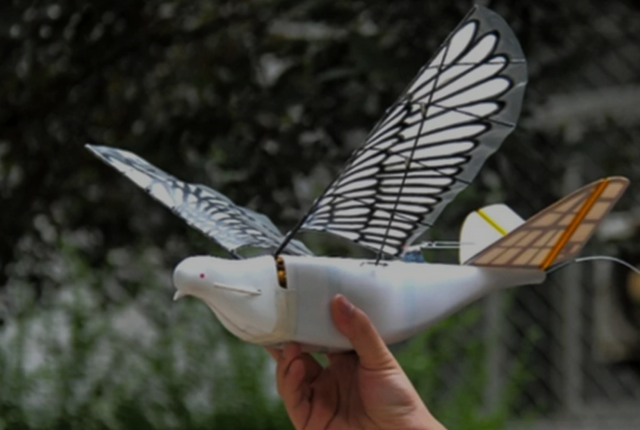 china using bird-inspired dove drone for state surveillance